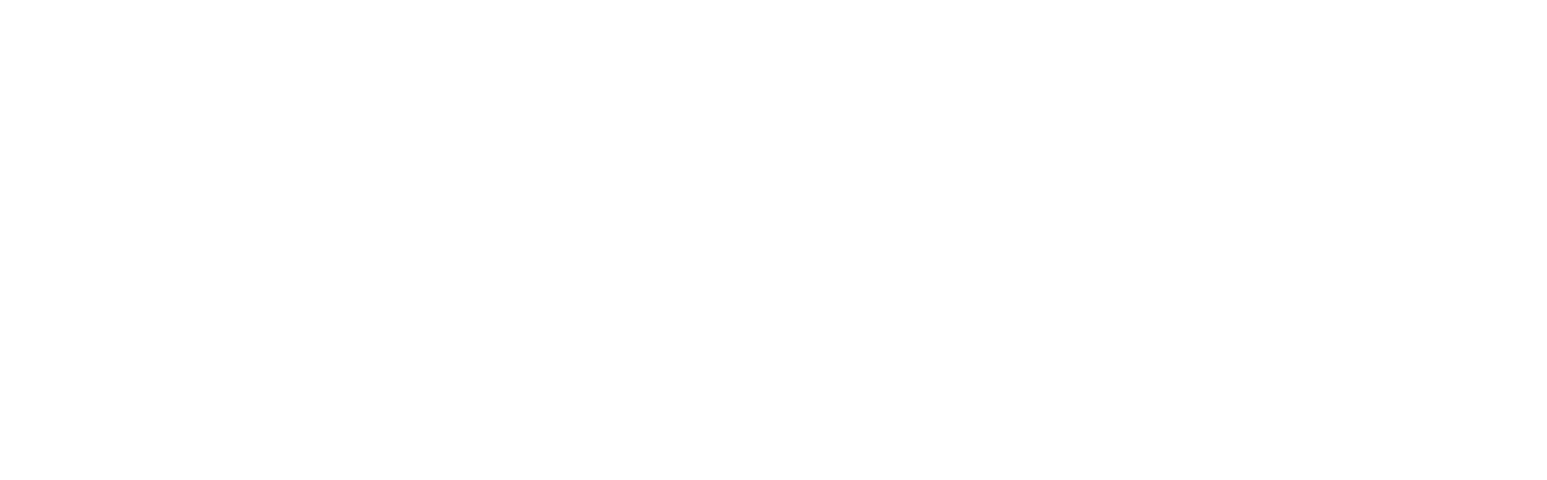 SAVIO Information Security